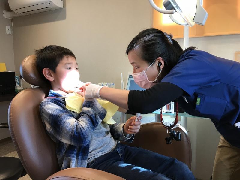息子の歯科治療   ケア編