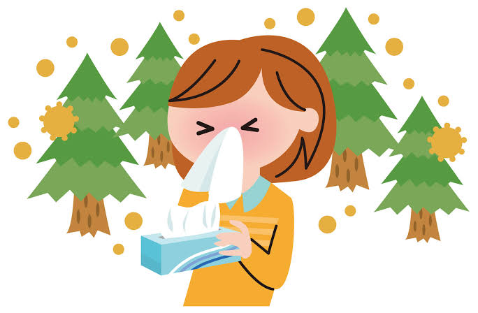 花粉症とお口の健康について